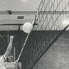 Wake Forest University Women's Volleyball Team