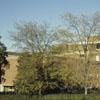City Memorial Hospital