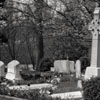View of a Cemetery