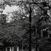 Siewers House in Salem