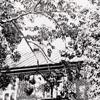 """Residence of E.W. Linebach"""