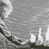 Boy sailing a boat in the lake at Tanglewood Park, 1960.