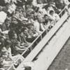 Rodeo at the Memorial Coliseum, 1959.