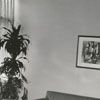 Dr. Riley Spoon's office in the Professional Building, 1957.