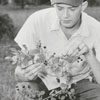 Unidentified man eating blackberries, 1956.