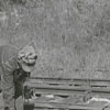 Hobo party on the Winston-Salem Southbound Railroad tracks, 1956.