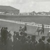 Horse race at the fairgrounds.