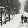 Cedar Avenue in Salem in the snow, 1938.