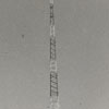 WSJS radio tower, 1941.
