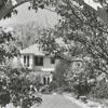 Mrs. Burton Craige's garden at her home on Cascade Avenue, 1952.