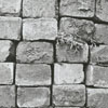 Bricks on Holly Avenue and Poplar Streets sidewalks, soon to be removed, 1969.
