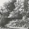Tanglewood Park garden pool, 1957.