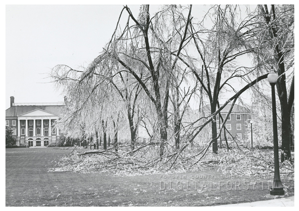 Ice storm hits Winston-Salem and damages trees throughout the city, 1967. Photo shows the Wake Forest campus and Reynolda Hall.