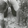 Brad Rauschenberg finds a roofing tile at the excavation of Bethabara, 1964.