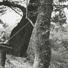 Shad fishing on the Tar River, 1963.