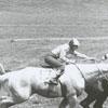 Tanglewood Steeplechase, 1963.