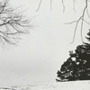 Sledding at Forsyth Country Club golf course, 1963.