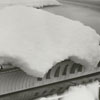 Snow on the back of a car, 1962.